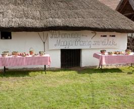 Itthon Vagy – Magyarország, szeretlek!