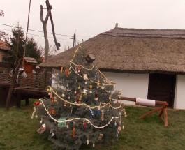 Karácsonyváró képekben