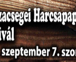 I. Tiszacsegei Harcsapaprikás Főző Fesztivál