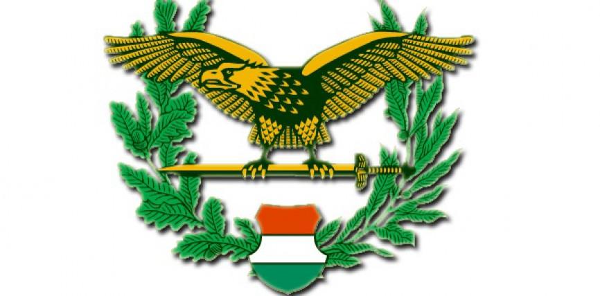Tartalékos és szerződéses katonákat toboroz a honvédség