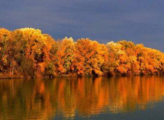 A Tisza ősszel