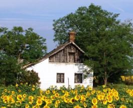 Lakossági tájékoztató a magyarországi tanyák villamos energiával történő ellátását megalapozó felméréssel kapcsolatban
